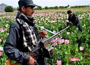 drogue-afghanistan