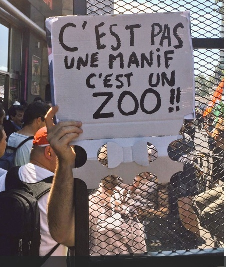 Zoo Le Point internet